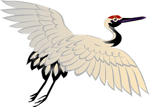 Red crowned crane bird clipart