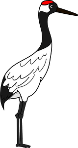 Red-crowned crane clipart