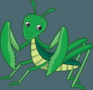 Mantis clipart