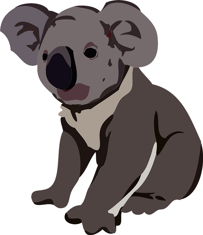 Koala Animal Clipart Free Download Transparent Png Creazilla