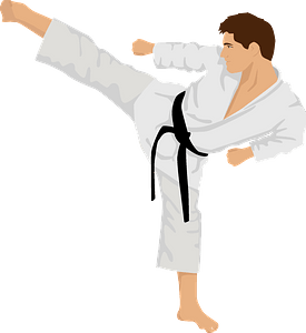Karate fighter clipart