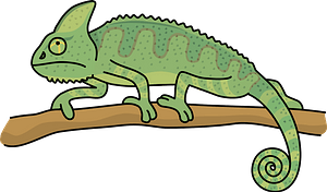 Veiled chameleon animal on a branch clipart