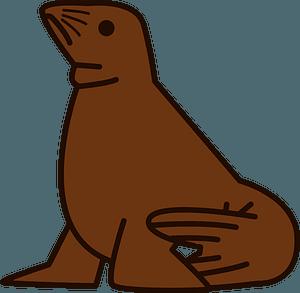 Steller sea lion clipart