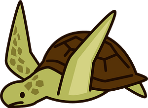 Sea turtle animal clipart