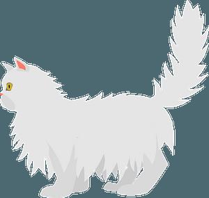 Persian Cat clipart