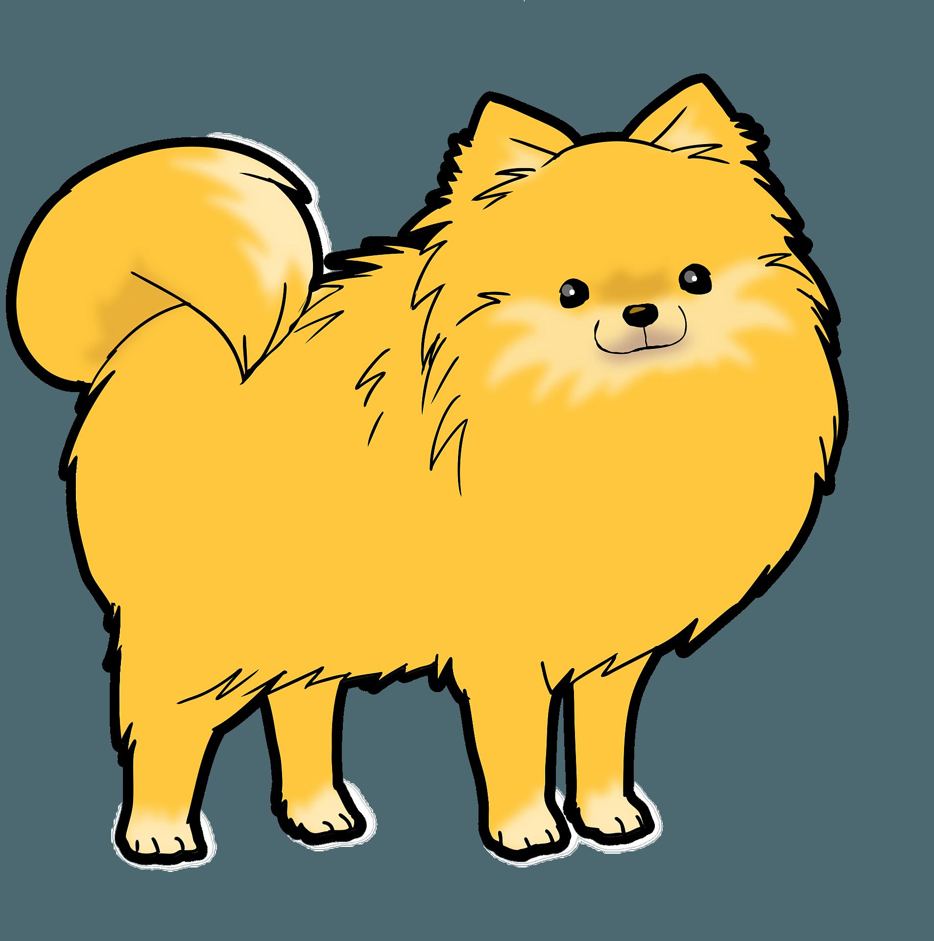 Pomeranian Dog Clipart Free Download Transparent Png Creazilla