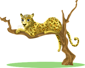 Leopard in a tree 클립 아트