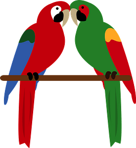 Green-winged military macaw clipart