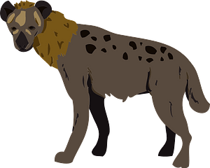 Hyena animal clipart