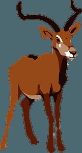 Impala clipart