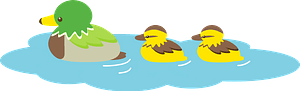 Ducks birds clipart