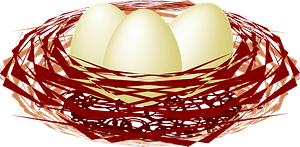 Eggs in a birds nest clipart