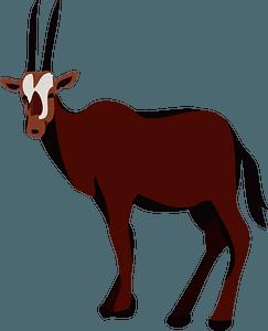 Gemsbok animal - large antelope clipart