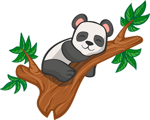 Giant panda sleeping in a tree clipart