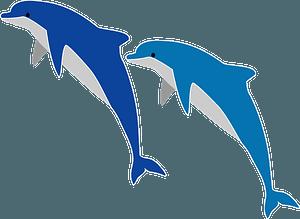 돌고래 점프 클립 아트