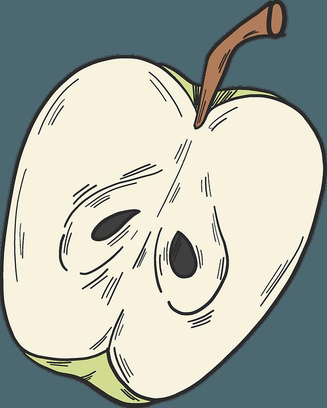 Half apple clipart