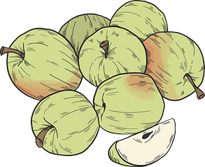 Green apples clipart