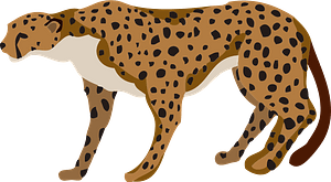 Cheetah animal clipart