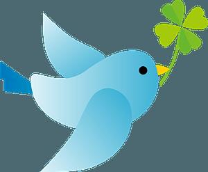 Blue bird is holding clover clipart