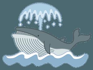Blue whale spouting clipart