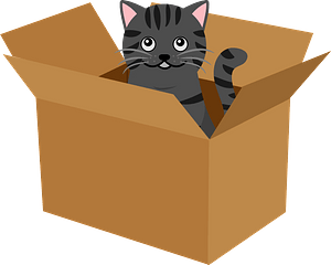Cat is in a Box clipart