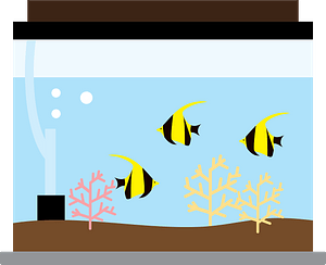 Aquarium angelfish clipart