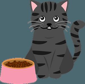 Cat and Cat Food Dish clipart