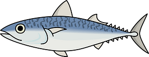 Mackerel fish clipart