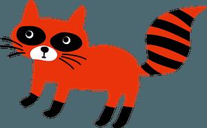 Raccoon dog animal clipart