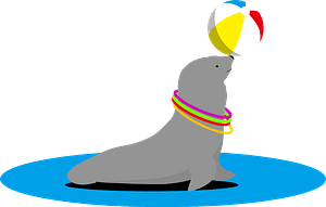 Sea lion animal clipart