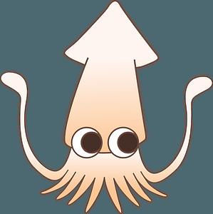 Squid animal clipart