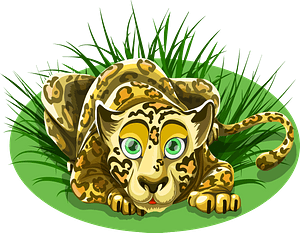 Leopard animal clipart