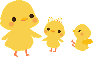 Yellow Chicks clipart
