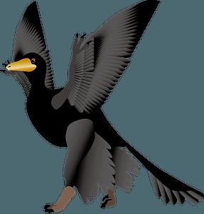 Microraptor dinosaur clipart