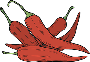 Chilli peppers clipart