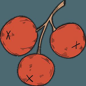 Three cranberries clipart
