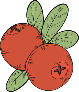 Two cranberries clipart