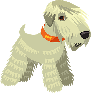 Irish terrier dog clipart