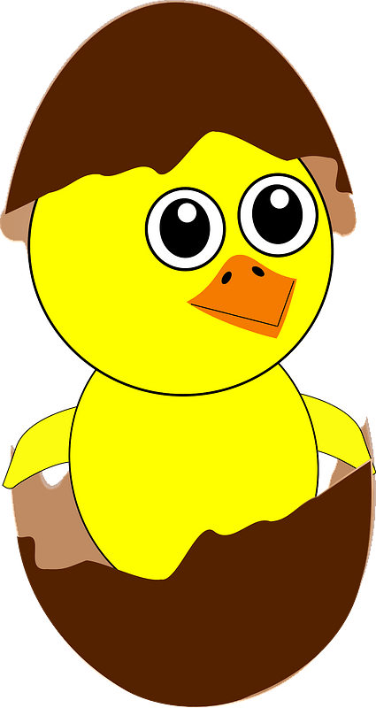 Chick coming out from the egg clipart