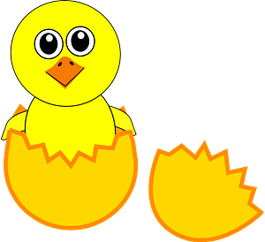 Funny chick coming out from the egg clipart