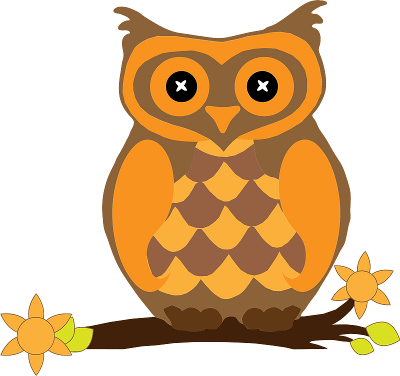 Orange owl clipart. Free download transparent .PNG   Creazilla