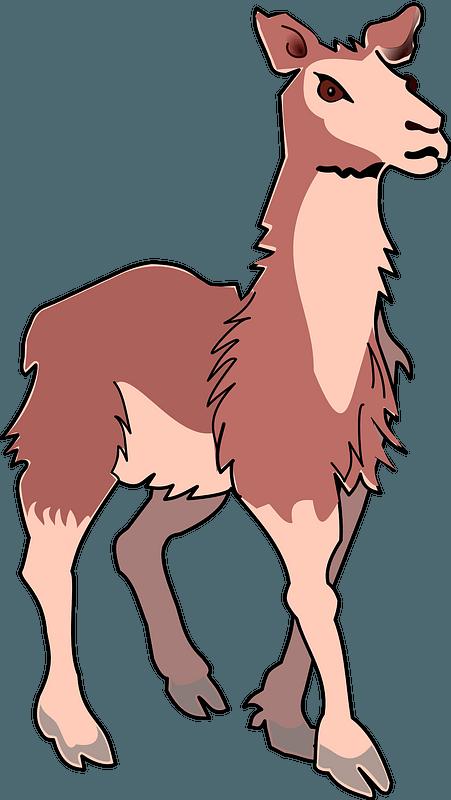 Hand Drawn Doodle Llama Clipart | Pre-Designed Photoshop Graphics ~  Creative Market