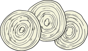 Slices of onion clipart
