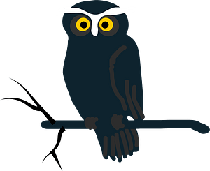 Black owl on branch clipart