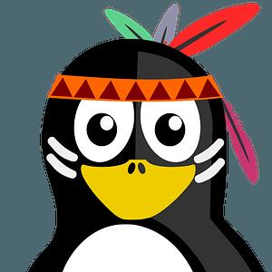 Native American penguin clipart