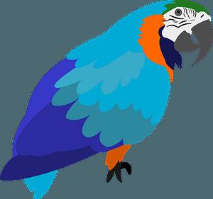 Parrot 클립 아트