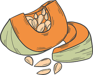 Cut pumpkin clipart