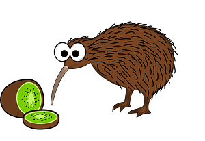 Kiwi Fruit and Kiwi Bird clipart