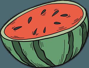 Half watermelon clipart