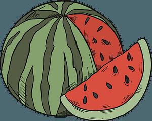 Sliced watermelon clipart